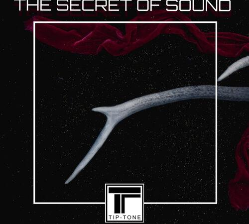 Recensione The Secret of Sound – TipTone